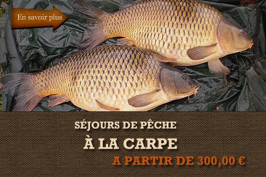 pocetna-la-carp